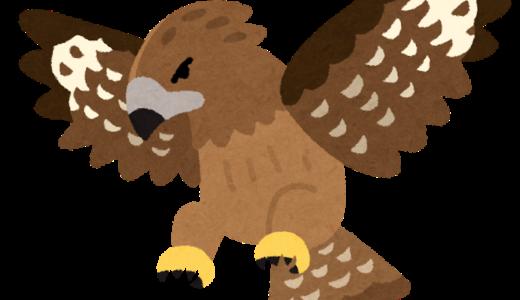 """""""トンビ""""が鷹を生むはあり得る?科学的な側面から解説〜子どもの能力を伸ばす方法も紹介〜"""